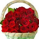 Darila za Dan žena 8. marec