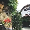 Kmečki turizem darilni boni
