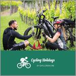 {[sl]:Celodnevni izlet z električnimi kolesi v Goriška Brda (Vrednostni bon, izvajalec storitev: EXPLOR