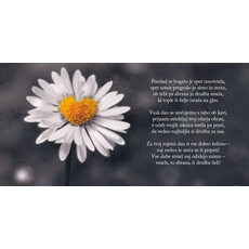 Verzi za rojstni dan – Pomlad