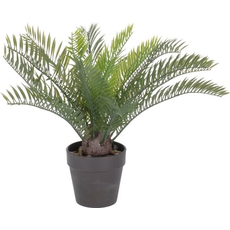 Dekorativna palma v lončku, 3Ocm