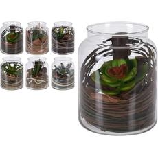 Kaktus v steklenem kozarcu, 16x12cm, sort.