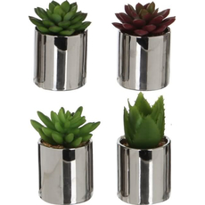 Dekorativa Kaktus Umetno Cvetje Lonček