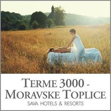 {[sl]:Masaža celega telesa Panonski travnik, Terme 3000, Moravske Toplice (Vrednostni bon, izvajale