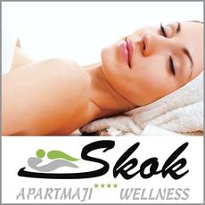 {[sl]:Nega telesa po izbiri, Apartmaji & wellness Skok Mozirje, Mozirje (Vrednostni bon, izvajalec storitev: SK