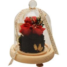 Šopek vrtnica (rdeča) preparirana s sivko v steklu 15x15x18cm