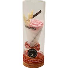 Vrtnica roza preparirana v dekorativni PVC embalaži z LED 9x9x24cm