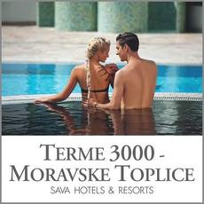3 urno kopanje za 2 osebi, Terme 3000, Moravske Toplice (Vrednostni bon, izvajalec storitev: Terme 3000)