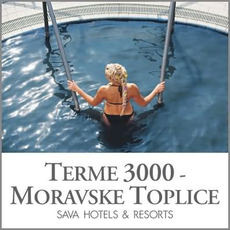 Celodnevno kopanje za 1 osebo, Terme 3000, Moravske Toplice (Vrednostni bon, izvajalec storitev: Terme 3000)