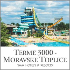 {[sl]:Celodnevno kopanje s kosilom za 1 osebo, Terme 3000, Moravske Toplice (Vrednostni bon, izv