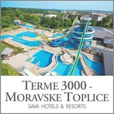 {[sl]:Celodnevno kopanje s kosilom za 2 osebi, Terme 3000, Moravske Toplice (Vrednostni bon, izv