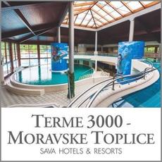 {[sl]:Celodnevno kopanje za 2 osebi, Terme 3000, Moravske Toplice (Vrednostni bon, izvajalec storitev: Ter